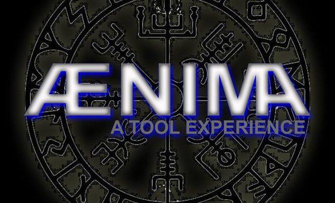 NNC w/ Ænima: A Tool Experience